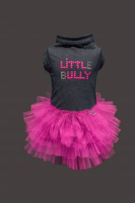 little bully dress - gold edition Teo I'm cool