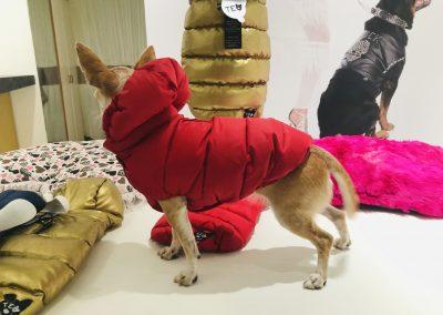 Forever soft jacket Rosso