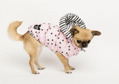 Stars & stripes rose creative soft jacket